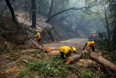 Cal Fire clearing road
