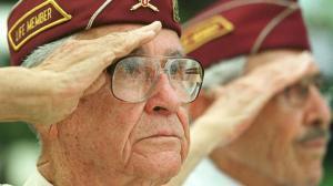 veterans vision