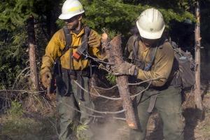 Wildfire firemen