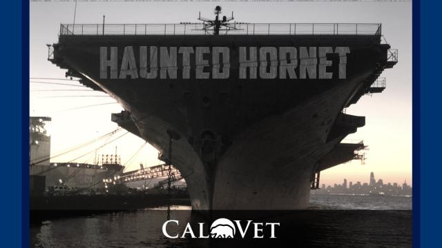 Haunted Hornet