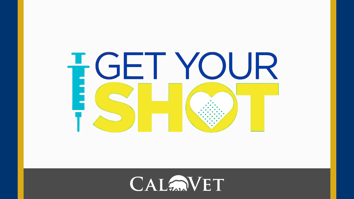 CalVet - Get Your Vaccination