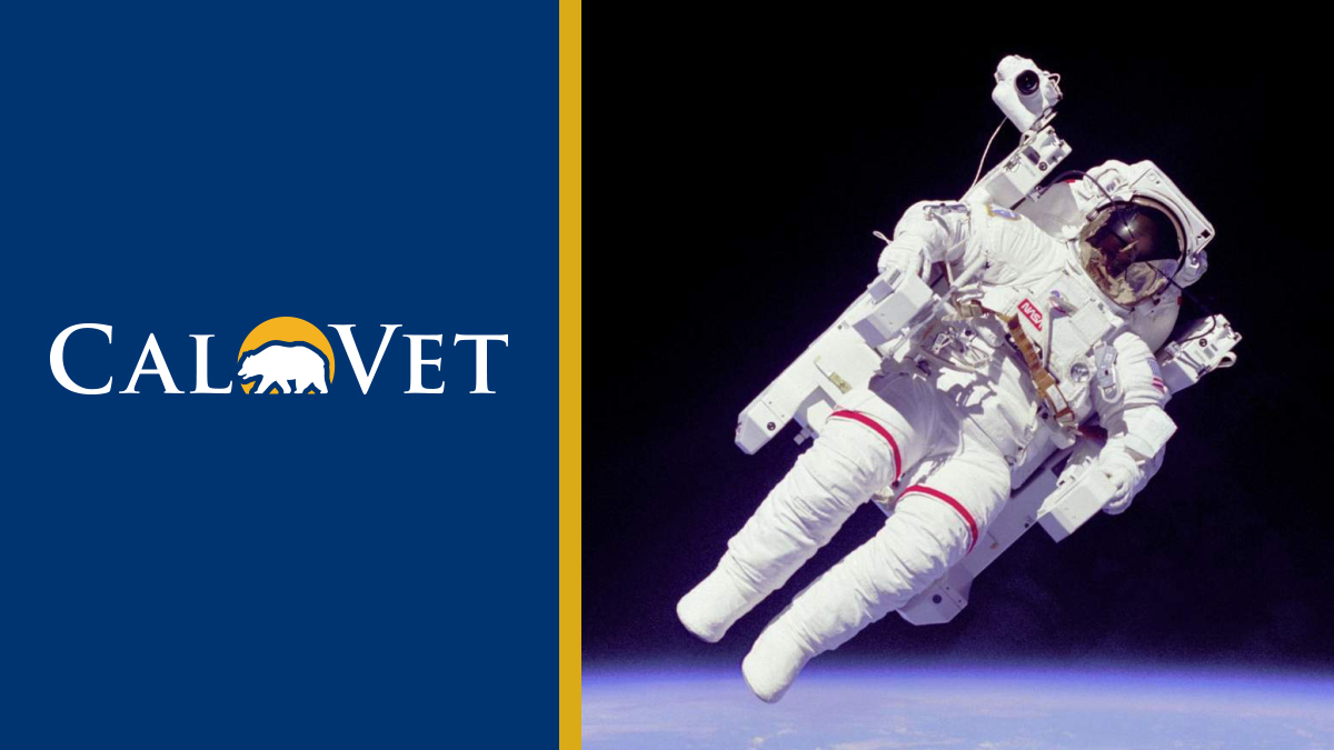 Navy Captain Bruce McCandless II became the first person ever to fly untethered in outer space. - Space Shuttle Challenger.