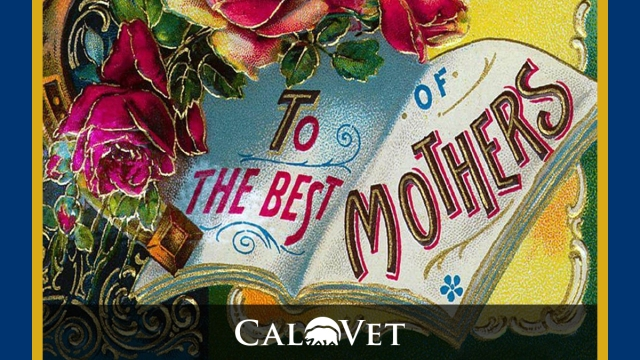 Mother'sDay, Old Style Card. The Best of Mothers