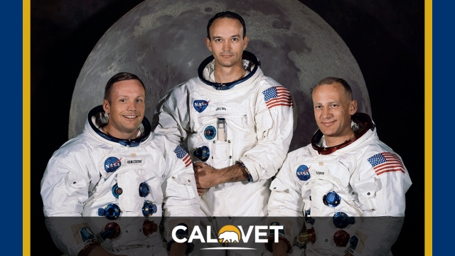 Neil Armstrong, Michael Collins, and Buzz Aldrin photographed in spacesuits with moon backdrop.