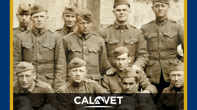 U.S. Army battalion during WWI.