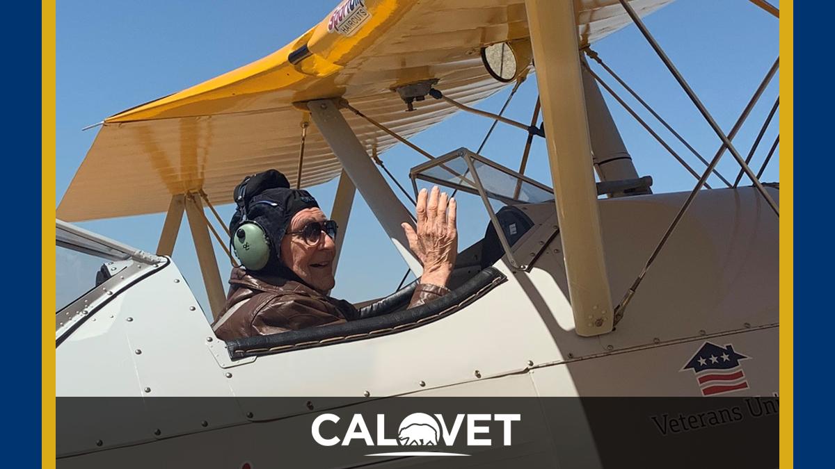Man in cockpit of WWII Bi-plane.