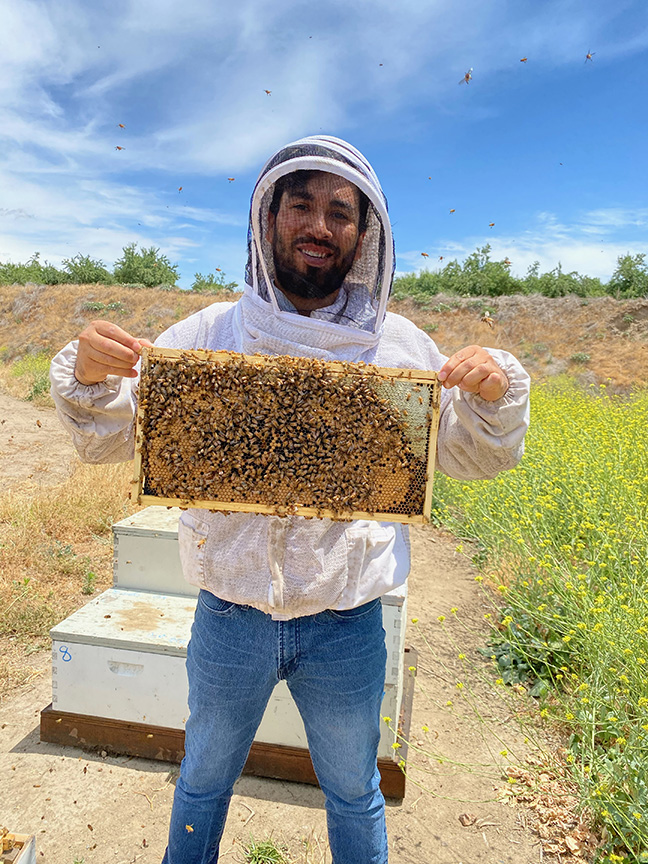 Jesus displaying a portion of bee colony.